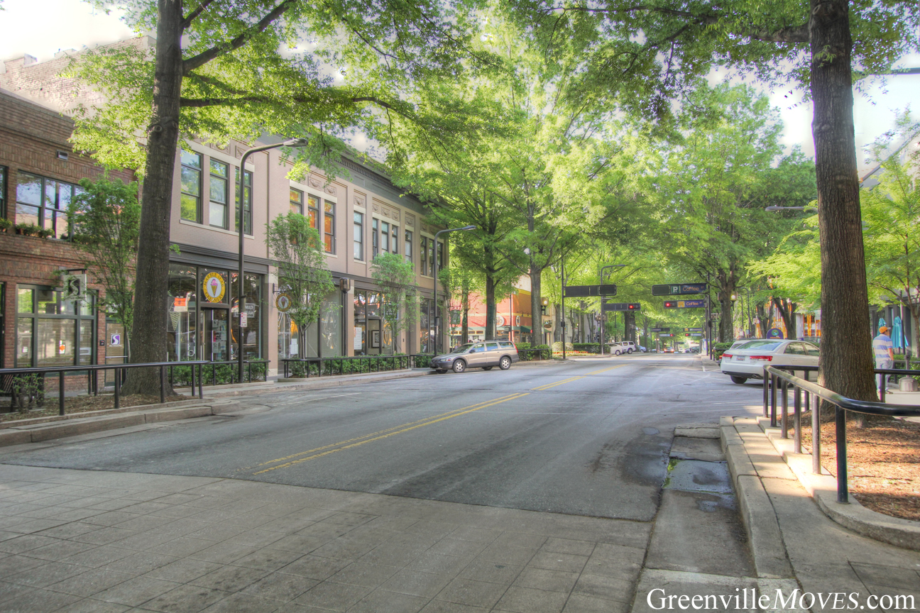 beautiful downtown Greenville real estate
